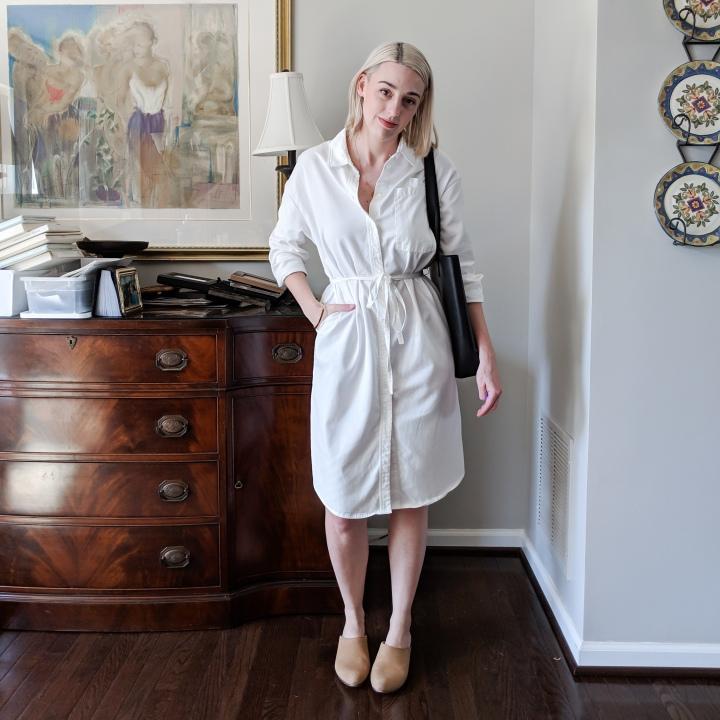 skye shirt dress