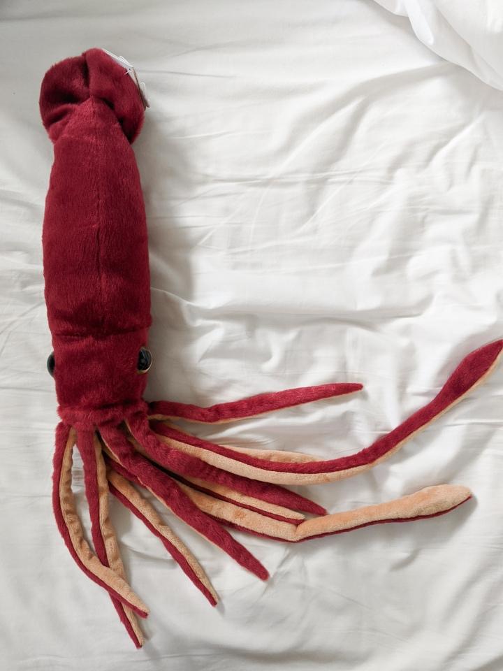 inky the squid
